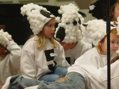 mollys-a-sheep-2.jpg