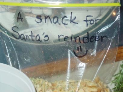 snack-for-reindeer-2.jpg