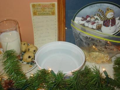 snacks-for-santa-and-reindeer-2.jpg