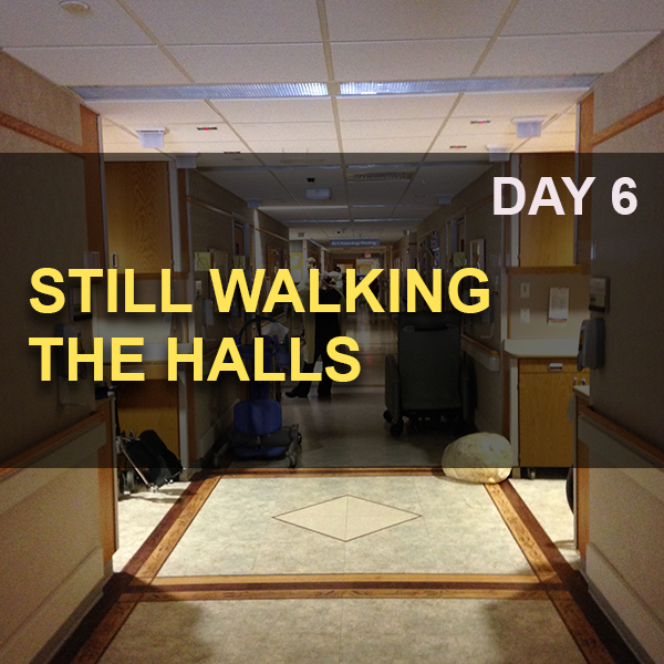 2016-04-07_Still Walking the Halls_Day 6